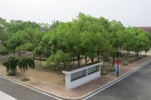 in the school (2)