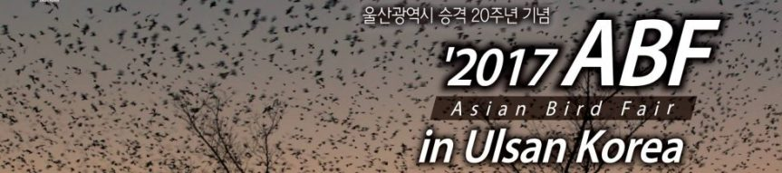 8th Asian Bird Fair Post-FairTours